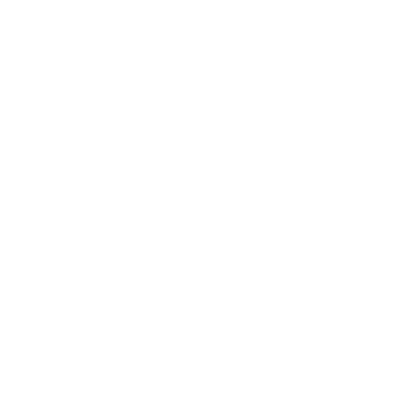 Worcestershire Council